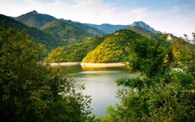 Обои зелень, горы, холмы, растительность, речка, кусты