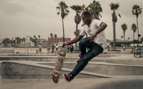Обои город, пальмы, люди, прыжок, скейтбординг, скейтборд, городских