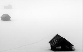 Обои поле, туман, дома