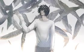 Картинка перо, крылья, парень, Death Note, тетрадь смерти