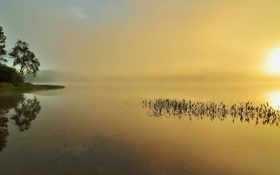 Картинка небо, деревья, закат, туман, озеро