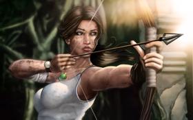 Картинка bow, lara croft, tomb raider, art, arrow