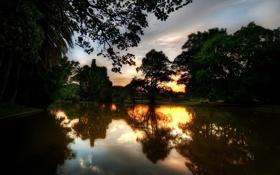 Картинка деревья, закат, озеро, парк, отражение, вечер, водоём
