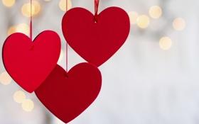 Картинка любовь, сердце, love