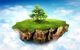 Картинка небо, трава, яблоки, Дерево