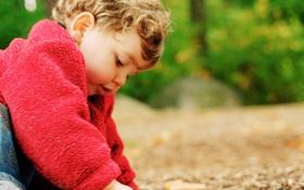 Картинка дети, фон, земля, обои, настроения, растение, ребенок