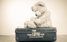 Обои грусть, одиночество, игрушка, медведь, мишка, чемодан, toy