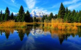 Обои небо, деревья, горы, озеро, отражение, ель, Вайоминг