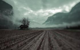 Картинка поле, пейзаж, туман, дом