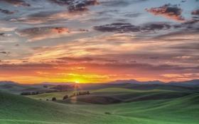 Обои штат Вашингтон, юго-восток, холмы, США, восход, поля