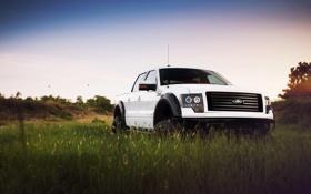 Обои белый, небо, трава, тюнинг, Ford, Форд, джип