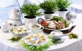 Картинка цветы, яйца, чайник, мясо, помидоры