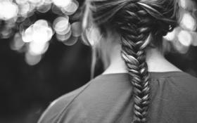 Обои волосы, прическа, черно-белое, коса