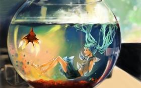Картинка вода, аквариум, рыбка, hatsune miku, вокалоид