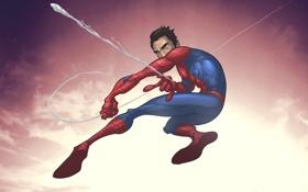 Обои человек-паук, spider-man, ultimate spider-man