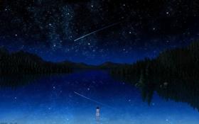 Обои небо, вода, звезды, девочка, падающая звезда