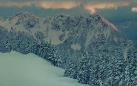 Картинка зима, лес, снег, закат, горы, пейзажи, вечер