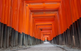 Обои дорога, столб, коридор, фонарь, Азия, перекладина