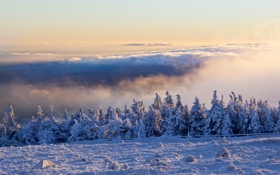 Обои Winter, Schnee, Brocken, Wolken, Harz, Morgen