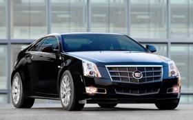 Обои чёрный, Cadillac, купе, CTS, black, Coupe, кадилак