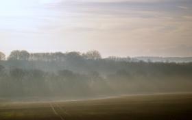 Картинка дорога, поле, небо, лучи, свет, деревья, природа