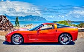 Обои авто, corvette, шевроле, chevrolet, cars, orange