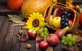 Обои осень, урожай, тыква, autumn, leaves, nuts, still life