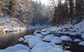 Картинка зима, лес, небо, снег, деревья, закат, река