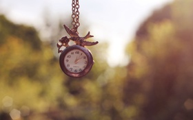 Картинка цветок, птица, часы, роза, цепочка