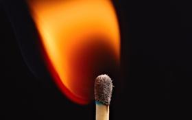Картинка Макро, черный фон, сера, возгорание, пламя