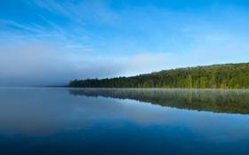 Обои природа, лес, озеро