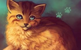 Обои морда, позитив, арт, рыжая, lucity, кошка