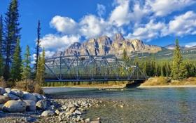 Картинка деревья, горы, мост, река, камни, Канада, Альберта