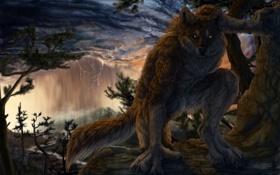 Обои лес, тучи, дождь, молния, волк, арт, оборотень