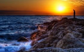 Обои море, волны, солнце, брызги, камни, берег