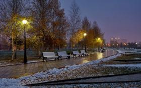 Картинка осень, город, парк, царицыно
