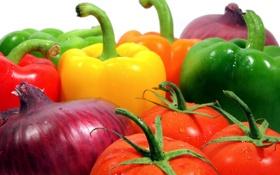 Картинка лук, перец, овощи, помидоры, томаты