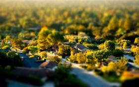 Картинка зелень, городок, деревья, дома
