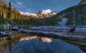 Обои лес, деревья, горы, озеро, ели, Canada