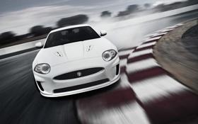 Обои XKR, 309, Jaguar, трек