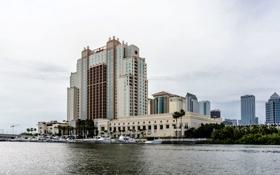 Обои США, USA, Tampa, Tampa Downtown, небоскреб, отель, building