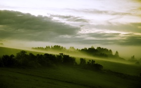Картинка лес, туман, склон, луга