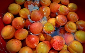 Картинка вода, урожай, фрукты, абрикосы