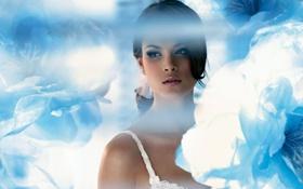 Картинка девушка, фон, обои, ангел