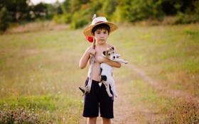Картинка собака, мальчик, щенок