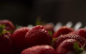 Обои размытость, клубника, ягода