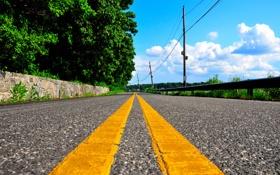 Обои дорога, деревья, желтый, полосы, улица