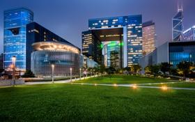 Обои трава, ночь, огни, Гонконг, Китай, фонарный столб, Tamar Park