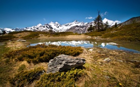 Обои трава, горы, озеро, камни, Швейцария, Zermatt