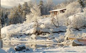 Картинка зима, снег, деревья, природа, река, Канада, Онтарио